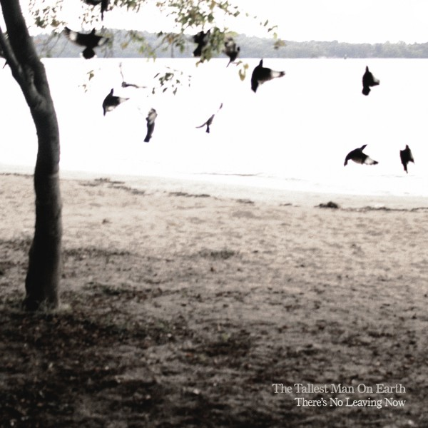 The Tallest Man on Earth: There's No Leaving Now download